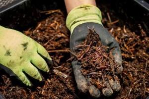 Compost-9